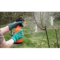 Правила обработки инсектицидами и фунгицидами